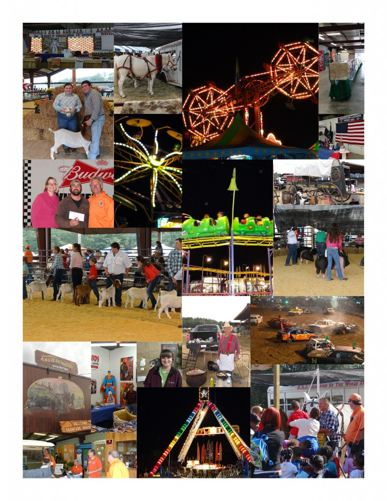 2014 Fair Collage